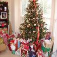 Nate_christmas06_357