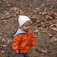 Leaves are fun!