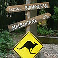 "The zoo's new ""Kangaroo Krossing"""