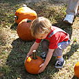 Nate picking out a pumpking - Oct. 4, 2008