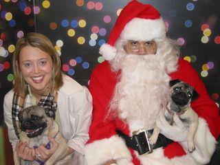 Christmaspugs